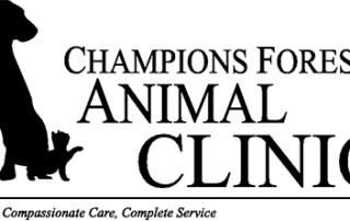 Champions Forrest Animal Clinic